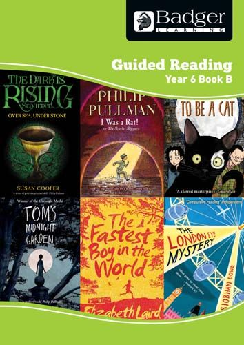 Enjoy Guided Reading Year 6 Book B Teacher Book & CD Badger Learning