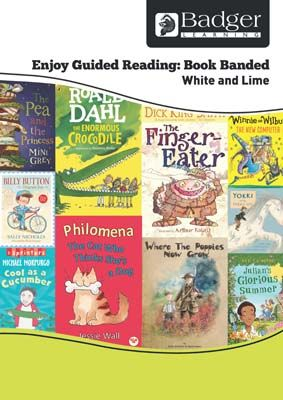 Enjoy Guided Reading Book Band - White and Lime Teacher Book & CD Badger Learning