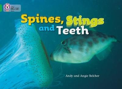 Spines, Stings and Teeth Badger Learning