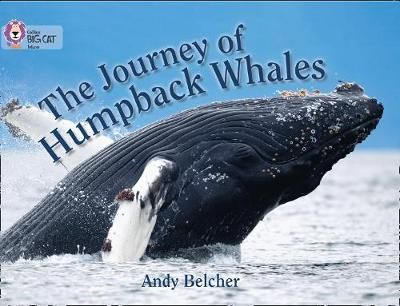The Journey of Humpback Whales Badger Learning