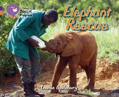 Elephant Rescue Badger Learning