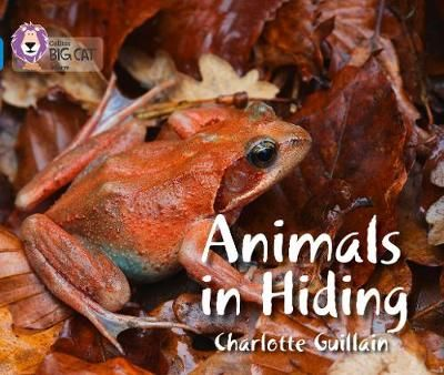 Animals in Hiding Badger Learning