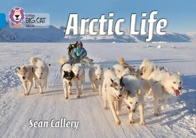 Arctic Life Badger Learning