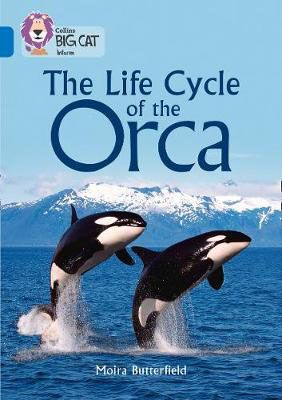 The Life Cycle of the Orca Badger Learning