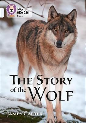 The Story of the Wolf Badger Learning