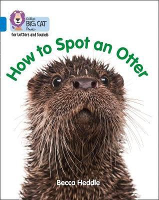 How to Spot an Otter Badger Learning