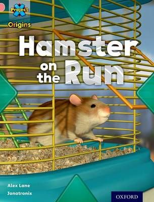 Hamster on the Run (My Home) Badger Learning