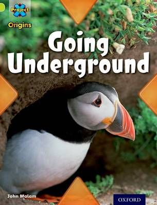 Project X Origins: Lime Book Band, Oxford Level 11: Underground: Going Underground Badger Learning