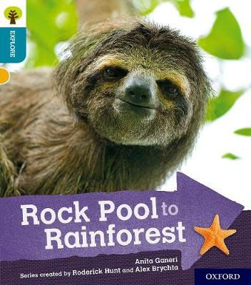 Rock Pool to Rainforest Badger Learning