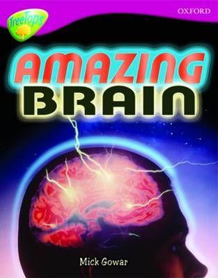 Amazing Brain Badger Learning