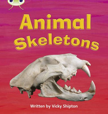 Animal Skeletons Badger Learning
