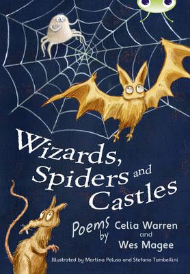 Wizards, Spiders & Castles Badger Learning