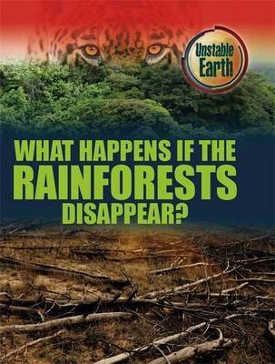 What Happens if the Rainforests Disappear? Badger Learning