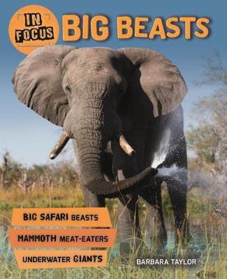 Big Beasts Badger Learning