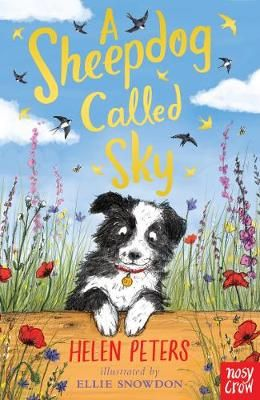 A Sheepdog Called Sky Badger Learning
