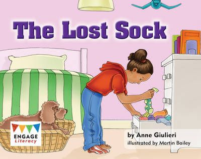 The Lost Sock Badger Learning