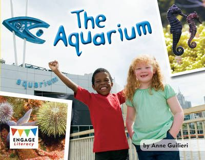 The Aquarium Badger Learning