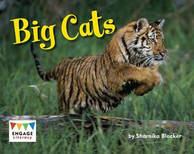 Big Cats Badger Learning