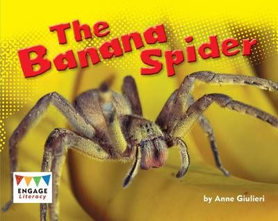 The Banana Spider Badger Learning