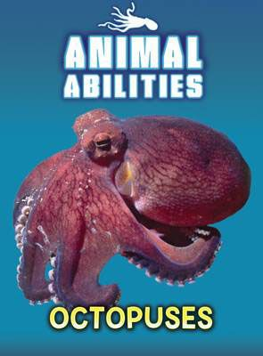 Octopuses Badger Learning