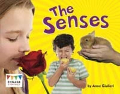The Senses Badger Learning