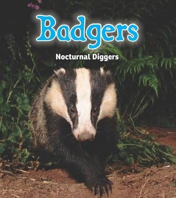 Badgers: Nocturnal Diggers Badger Learning