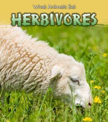 Herbivores Badger Learning