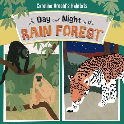 Day & Night in the Amazon Rainforest Badger Learning