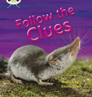 Follow the Clues Badger Learning