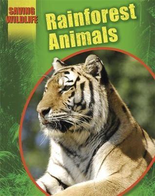 Rainforest Animals Badger Learning