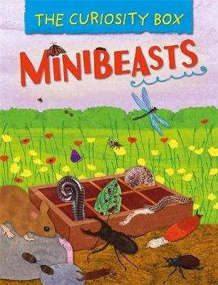 The Minibeasts Badger Learning