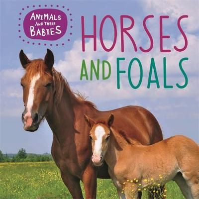 Horses & foals Badger Learning
