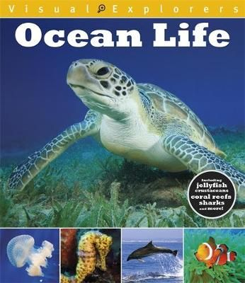 Ocean Life Badger Learning