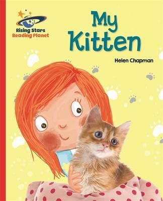My Kitten Badger Learning