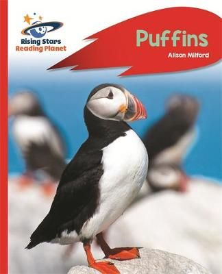 Puffins Badger Learning