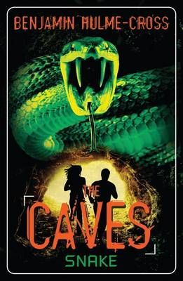 The Caves: Snake Badger Learning