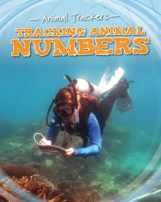 Tracking Animal Numbers Badger Learning