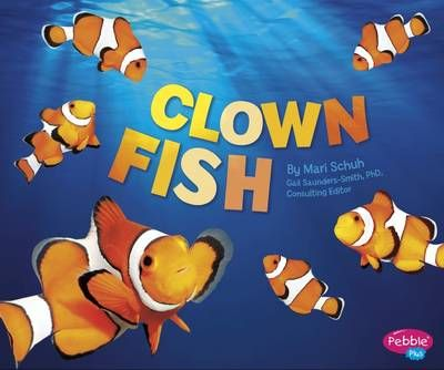 Clown Fish Badger Learning