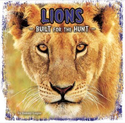 Lions: Built for the Hunt Badger Learning