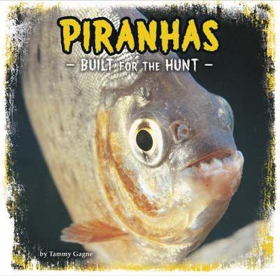 Piranhas: Built for the Hunt Badger Learning