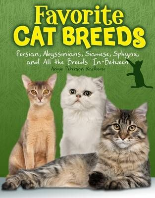 Favourite Cat Breeds: Persians, Abyssinians, Siamese, Sphynx, and all the Breeds In-Between Badger Learning