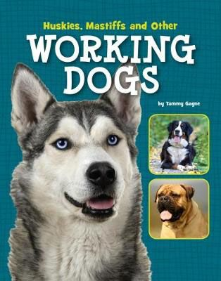 Huskies, Mastiffs & Other Working Dogs Badger Learning
