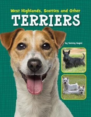 West Highlands, Scotties & Other Terriers Badger Learning