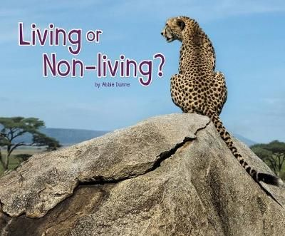 Living or Non-Living? Badger Learning