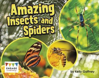 Amazing Insects & Spiders Badger Learning