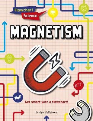 Magnetism Badger Learning