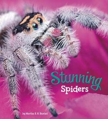 Stunning Spiders Badger Learning