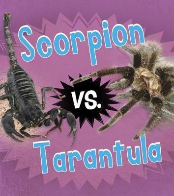 Scorpion vs. Tarantula Badger Learning