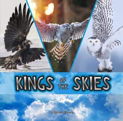 Kings of the Skies Badger Learning