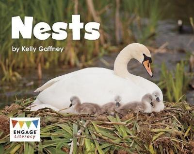Nests Badger Learning